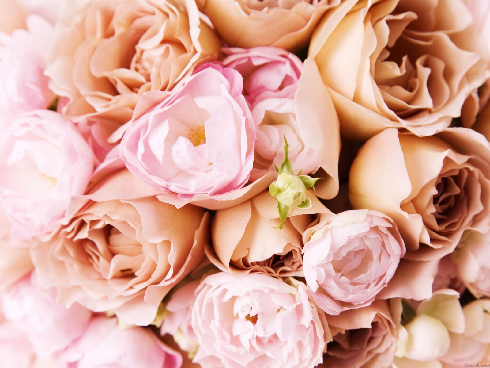 finding a florist for your bridal bouquet hunt country