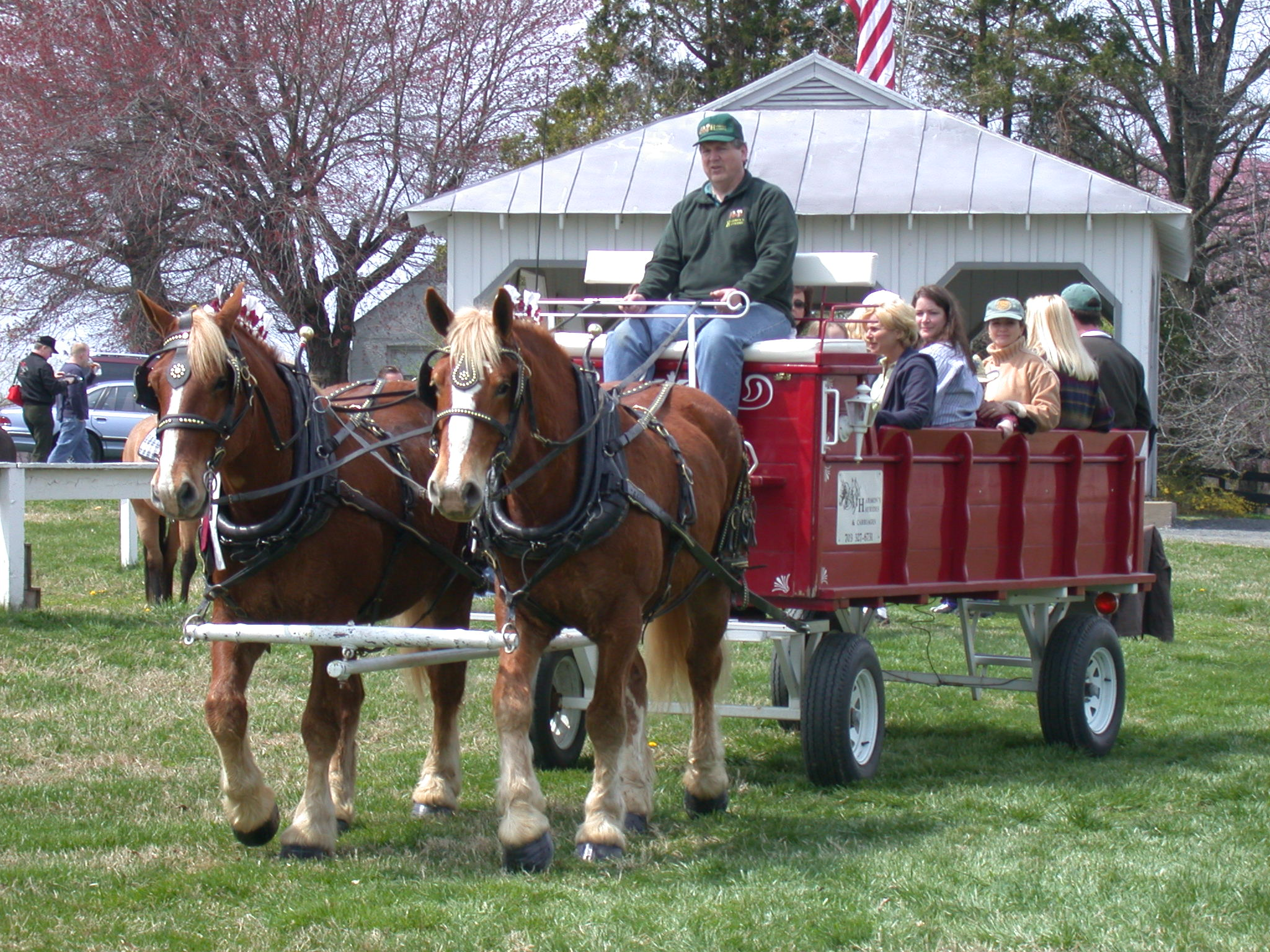 Have A Horse Drawn Hayride At Your Wedding